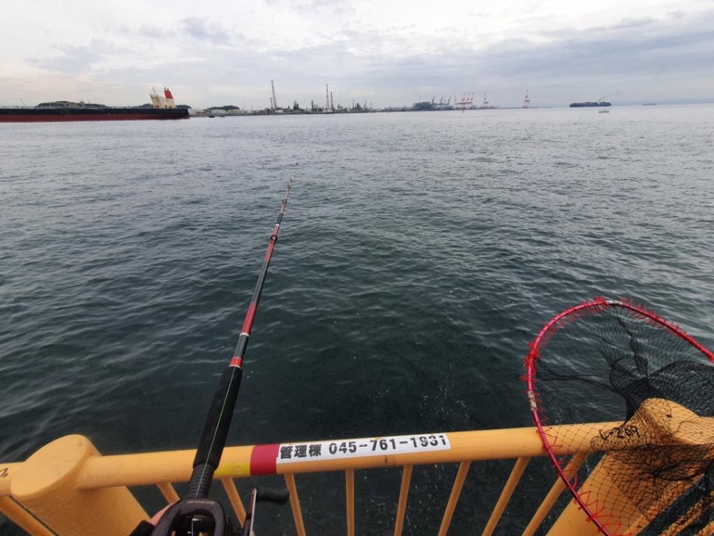 大物狙いでタコ釣り&泳がせ釣り【磯子海釣り施設】