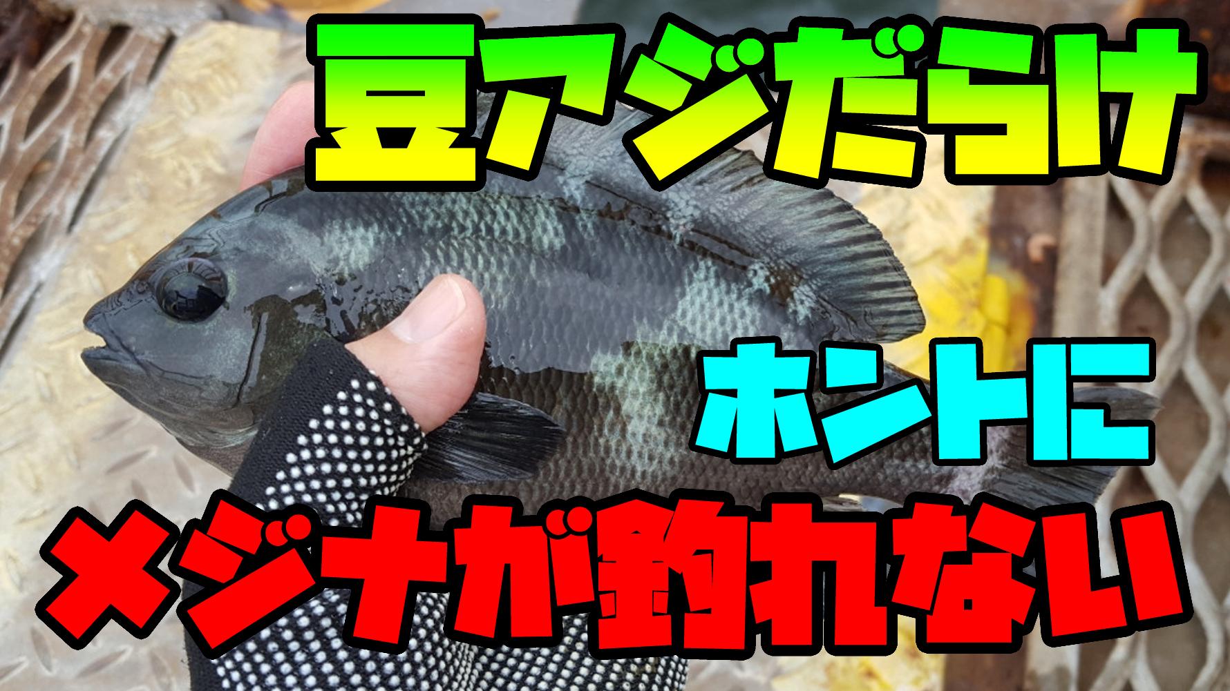 55fishing