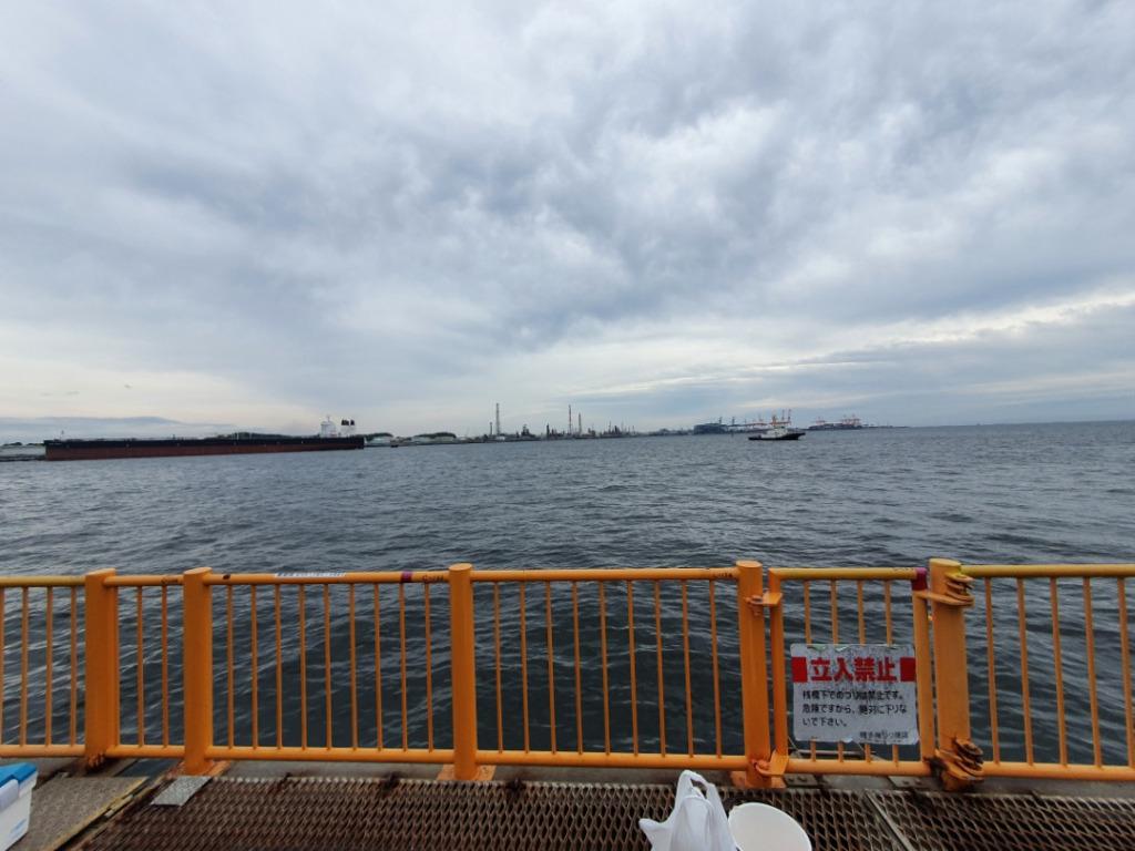 サバをエサにして久しぶりにタコ釣りをしてみた!!:磯子海釣り施設