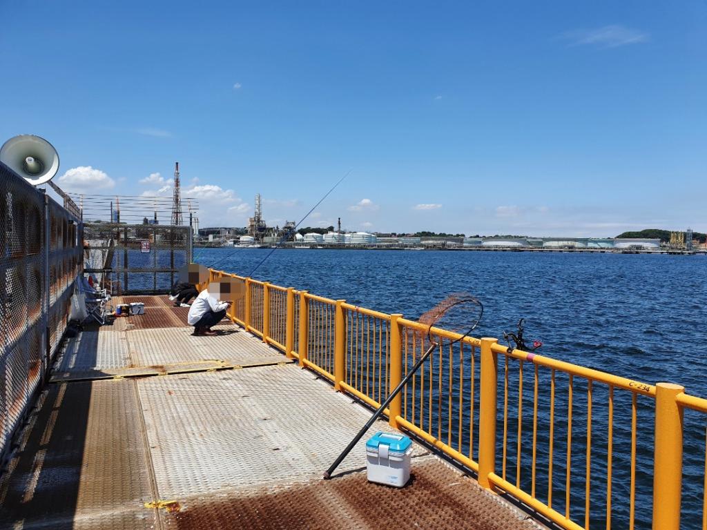 快晴の中のウキフカセ釣り:神奈川 磯子海釣り施設