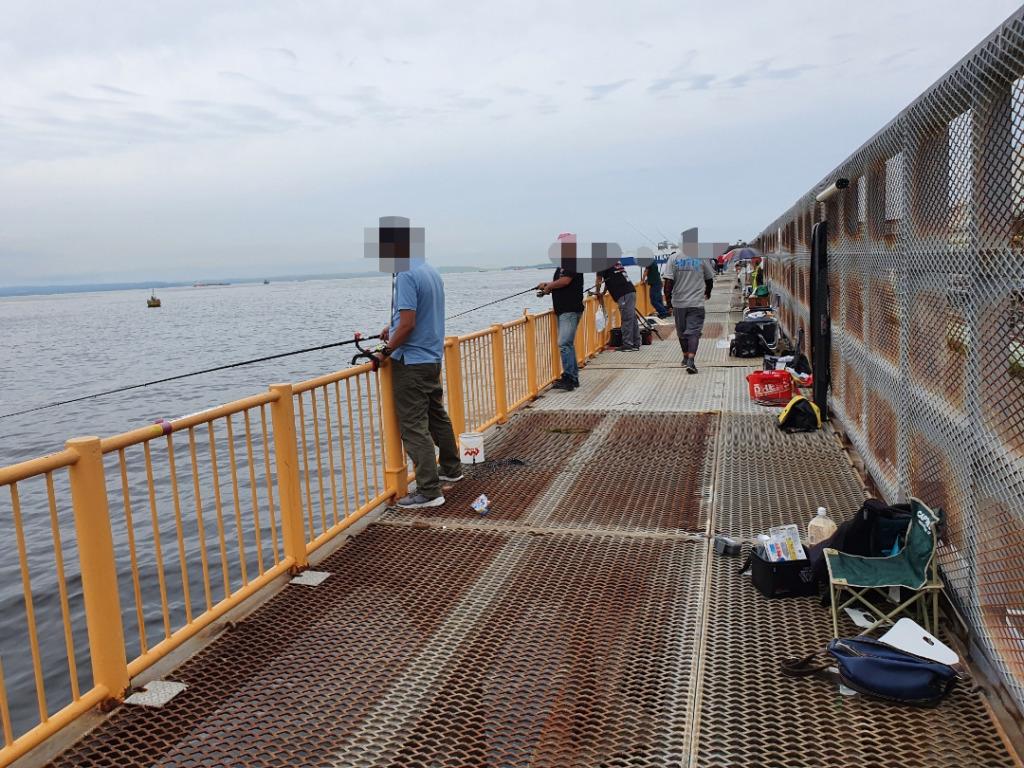 磯子海釣り施設でタコ釣り調査!!