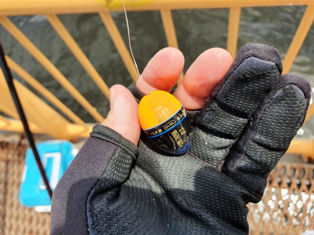 逃がした魚は大物だった?!ウキフカセ釣り 横浜