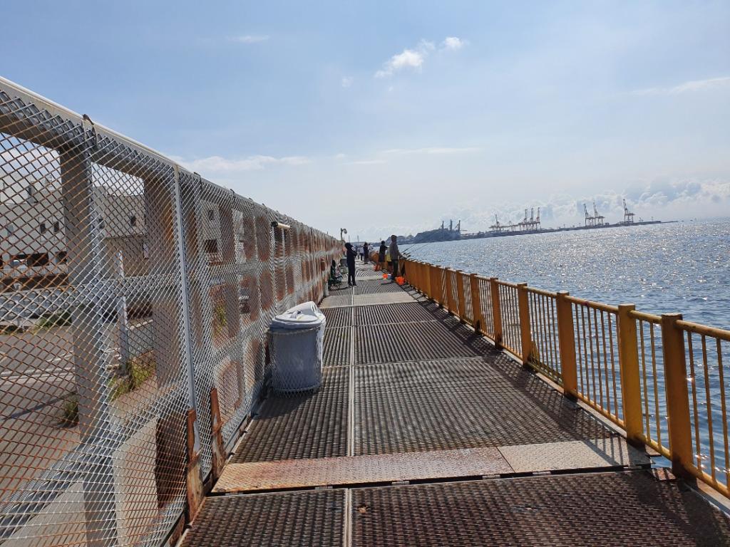東桟橋・南桟橋どちらが釣れる?メジナ釣り 磯子海釣り施設 横浜