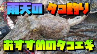 タコ釣りのおすすめアイテム:ノリノリタコライダーを試してみた!!