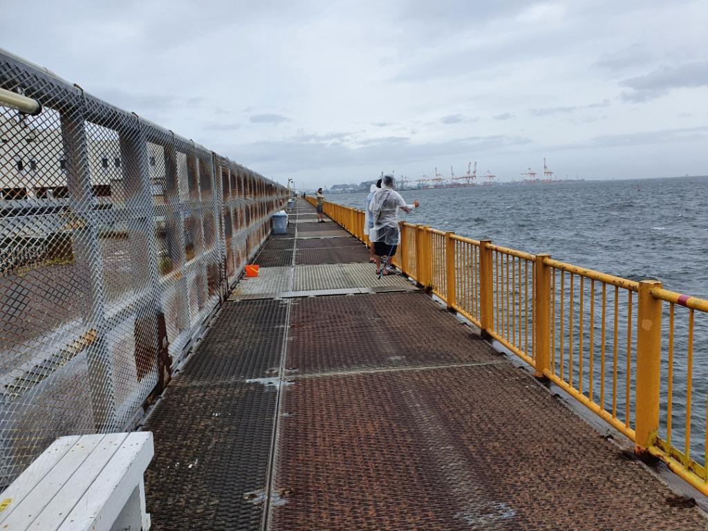 再検証!!東桟橋・南桟橋どちらが釣れる? ウキフカセ釣りメジナ