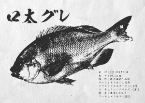 gyotaku_037