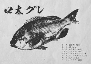 gyotaku_09