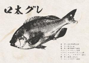 gyotaku_10