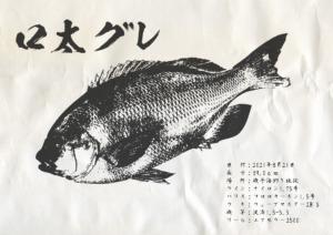 gyotaku_12