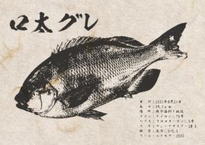 gyotaku_40