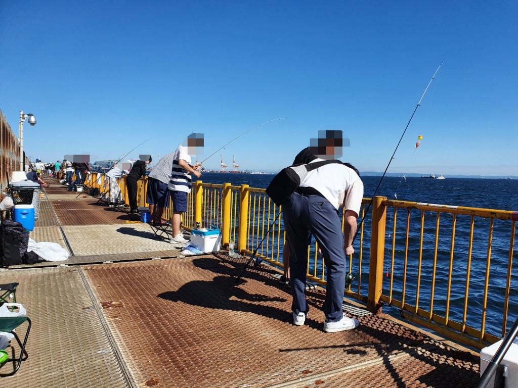 フカセ釣りをしていたら強烈な引きで大型青物が釣れた!!神奈川・横浜