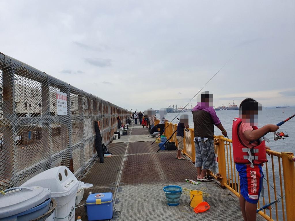 水温が不安定な中なんとかメジナをGET サバ・アジも好調 神奈川