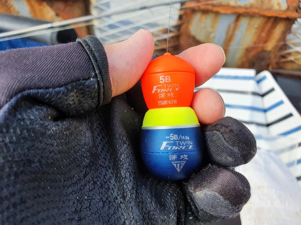 温暖化の影響!東京湾で大繁殖する危険な毒魚に注意!!神奈川 横浜