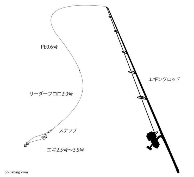 アオリイカを狙ってエギングに挑戦!秋イカは釣れるか?!神奈川