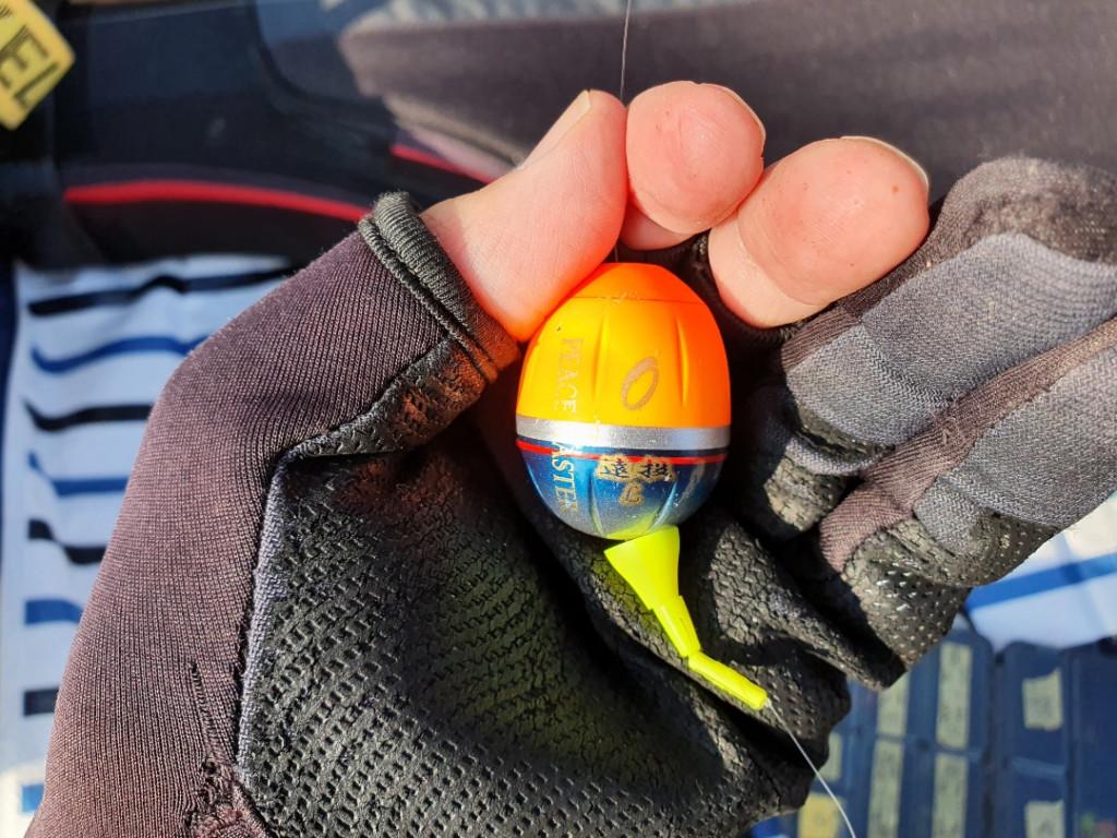 カワハギシーズン開幕!メジナは釣れるもサイズが上がらず 神奈川