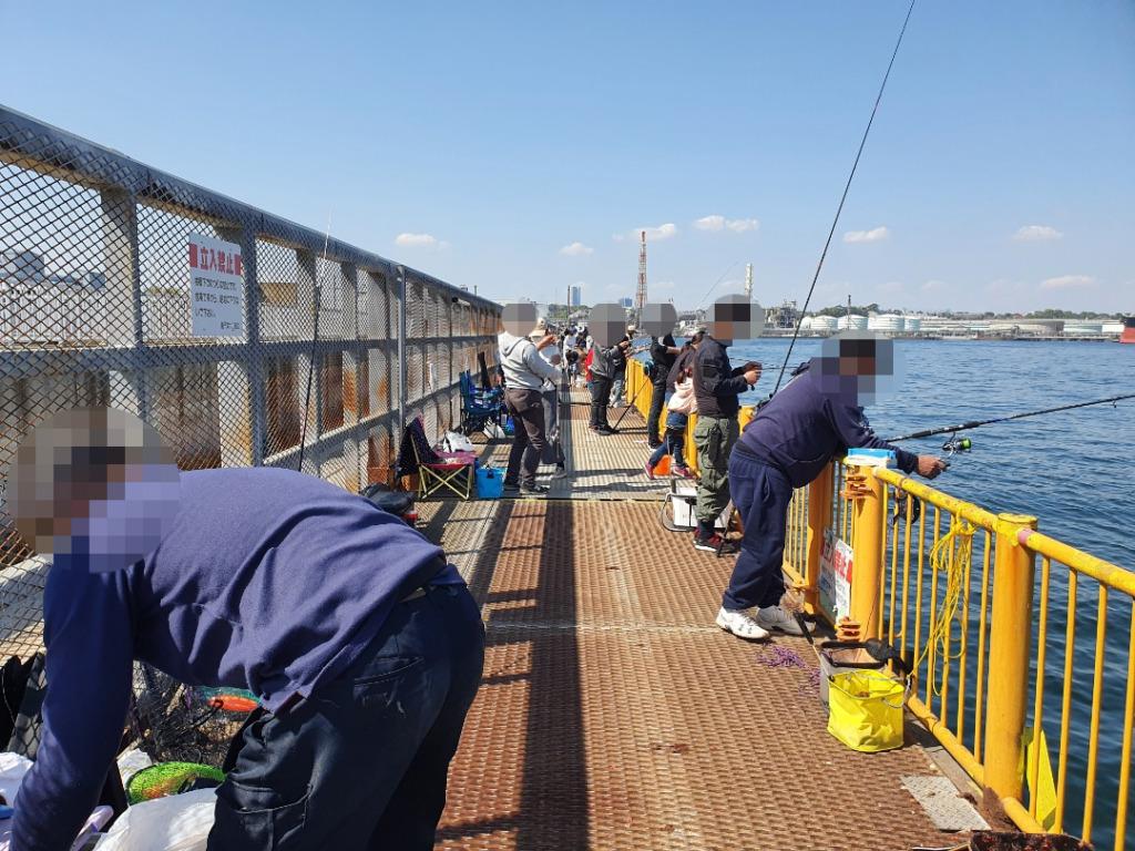 アジをエサに泳がせ釣りをしてみた:磯子海釣り施設
