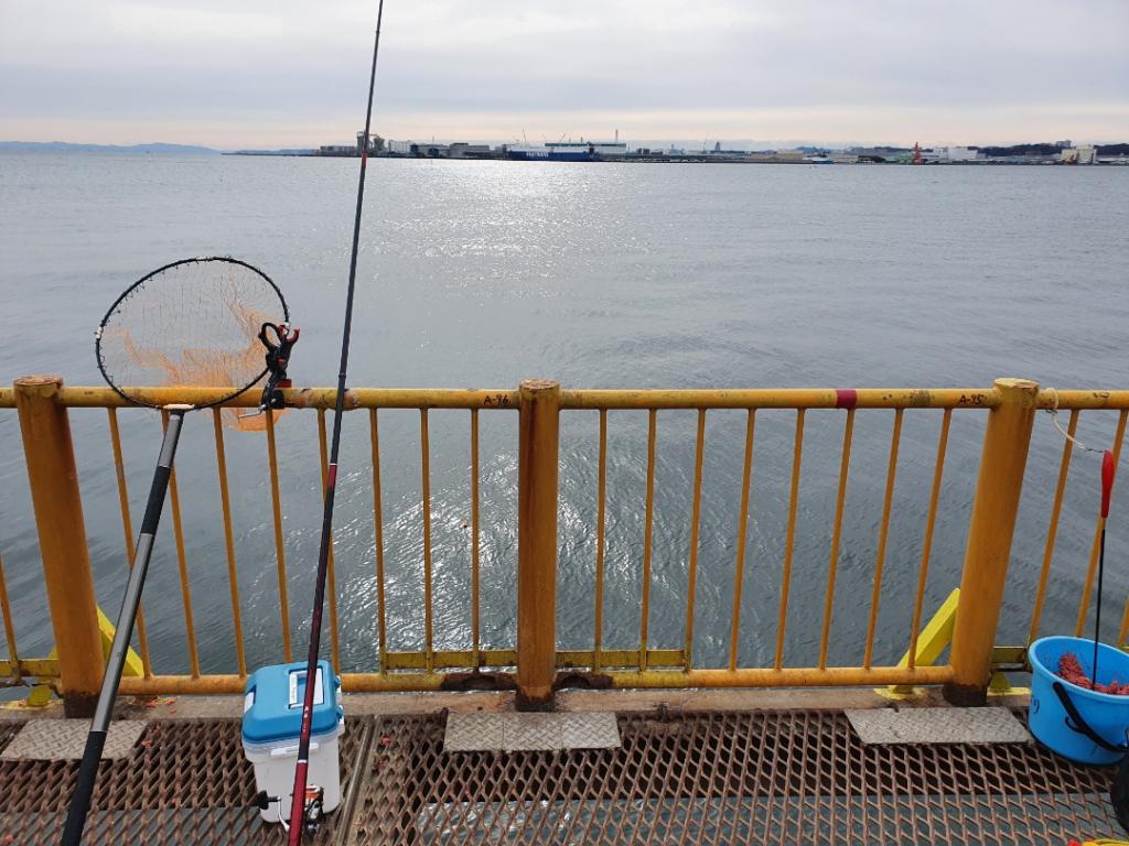 寒波の中釣りに行ったら、今年最初のアレが・・・【磯子海釣り施設】