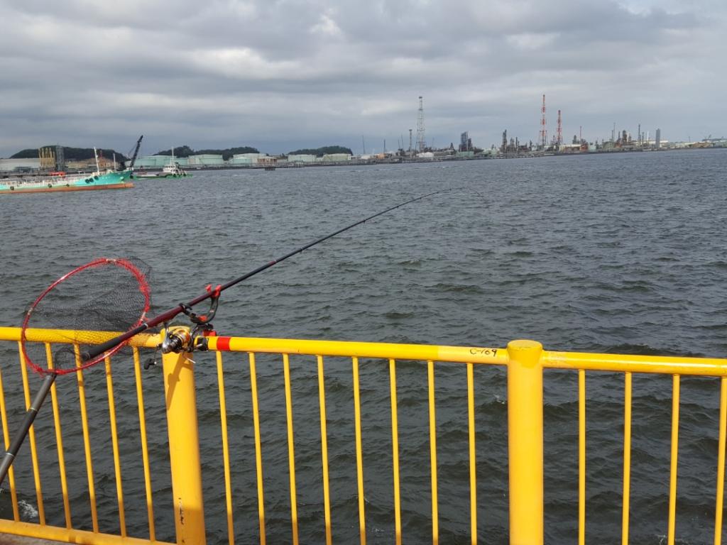 シルバーウィーク2日釣行|磯子海釣り施設
