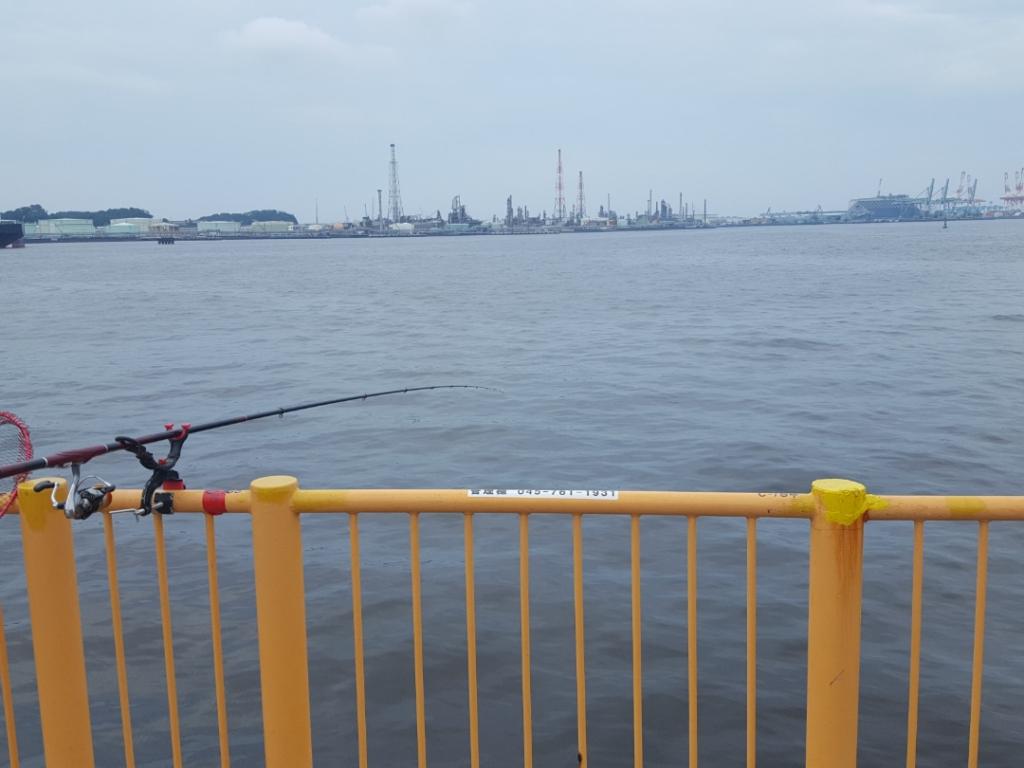 海釣り施設横でタコ釣りしたら大物がきた!/磯子・根岸