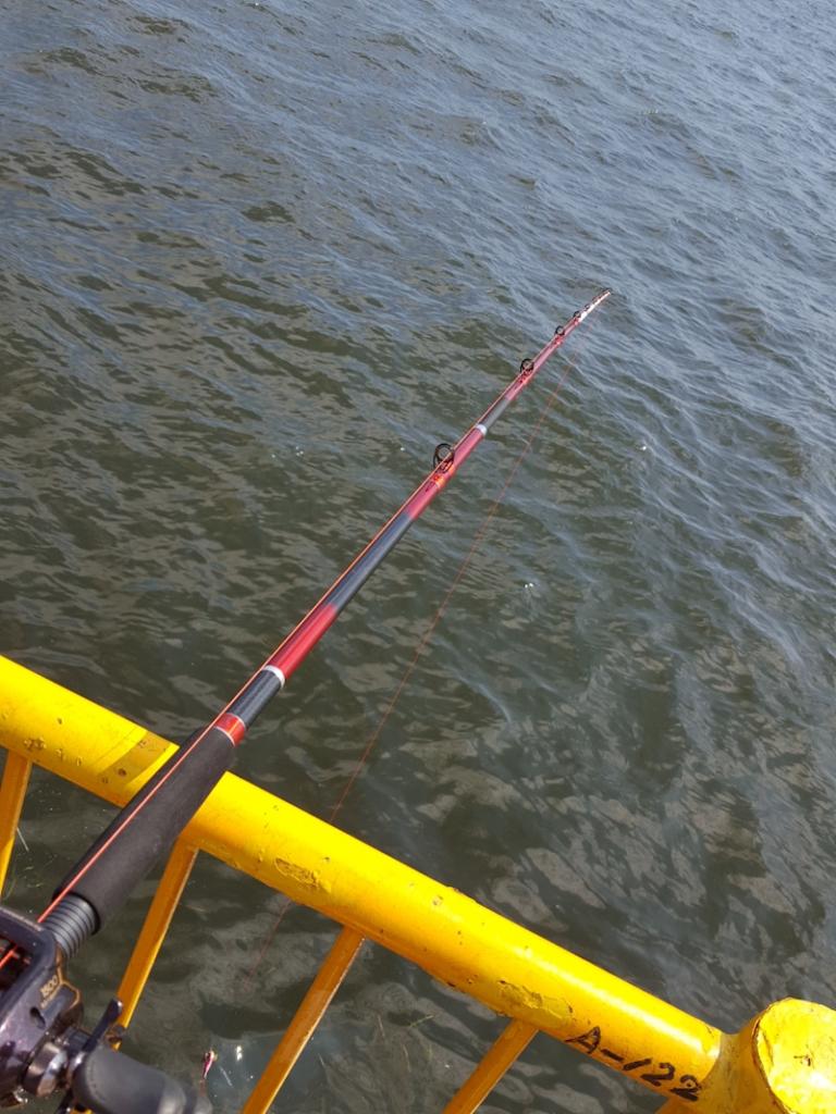 パワー重視のおすすめタコ釣りロッドを紹介!